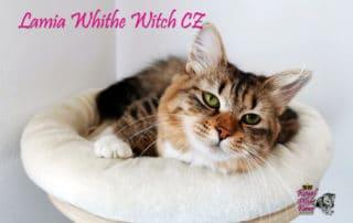 Lamia White Whitch CZ