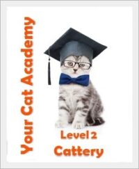 Abzeichen Level 2 - Your Cat Academy