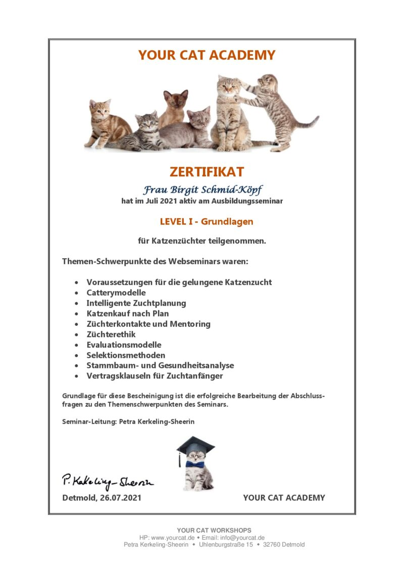 Zertifikat Level 1 - Your Cat Academy