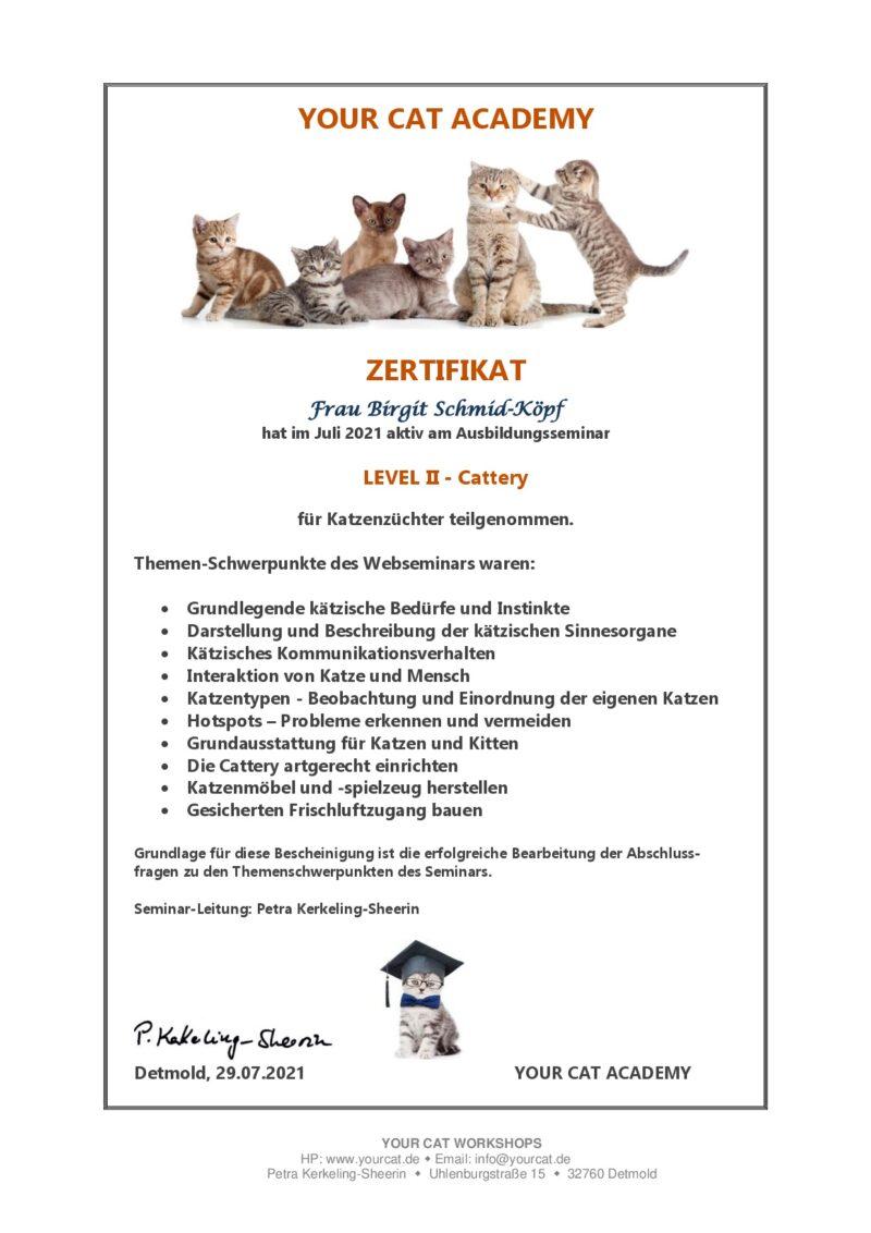 Zertifikat Level 2 - Your Cat Academy